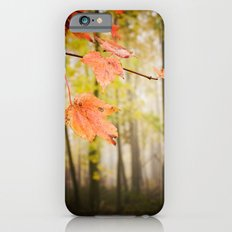 Autumn Fire iPhone 6s Slim Case