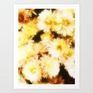 Golden Michaelmas Daisie… Art Print
