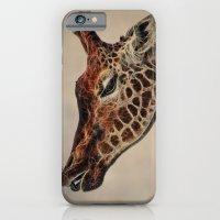 Giraffa camelopardalis iPhone 6 Slim Case