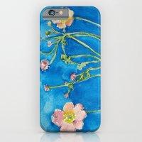 Anemones iPhone 6 Slim Case