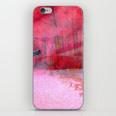 Coxyababyr iPhone & iPod Skin