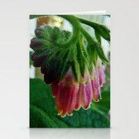 Comfrey Stationery Cards