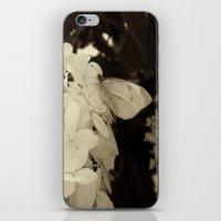 Petal Wings iPhone & iPod Skin