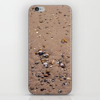 Beach Sand 7130 iPhone & iPod Skin