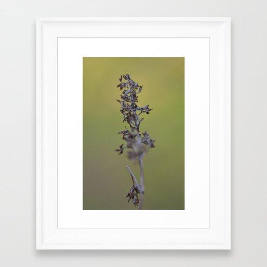 Pods Framed Art Print