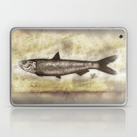 Sardine Laptop & iPad Skin