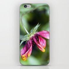 Stooped iPhone & iPod Skin