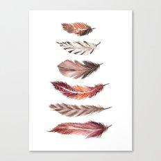 Bohemian Feathers Canvas Print