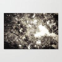 the tree of love Canvas Print