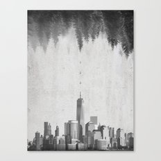 THE EVOLUTION Canvas Print