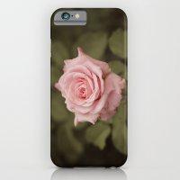 Honey iPhone 6 Slim Case