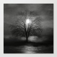 Black And White - Beauti… Canvas Print