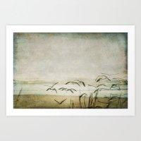 Gulls at the Beach  Art Print