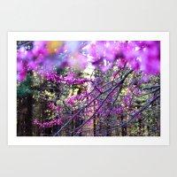 Fuchsia Dream Art Print