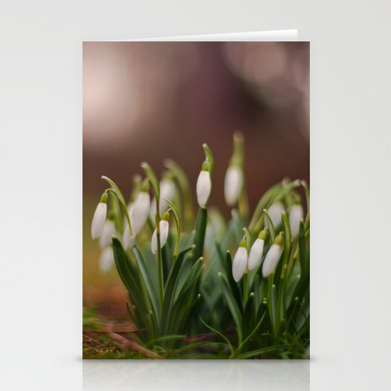 Hello Spring Stationery Card
