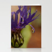 Early Morning Rain Drop Stationery Cards