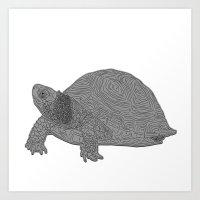 Turtle Illustration B/W Art Print