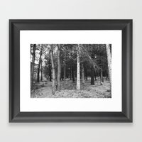 BLACK AND WHITE// FOREST Framed Art Print
