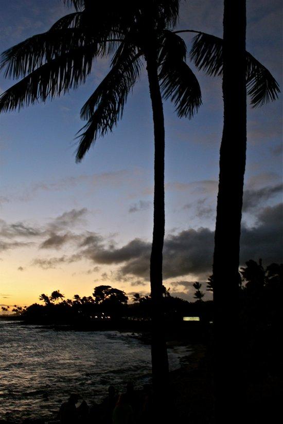 HAWAIIAN PARADISE Art Print