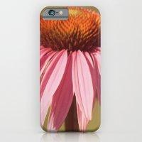 Basking In Summer's Glow iPhone 6 Slim Case