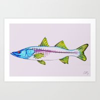 Uncommon Snook Art Print