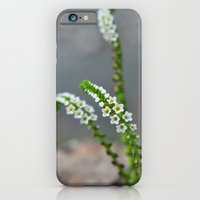 iPhone & iPod Case featuring pretty little things by Sofia Mansilla