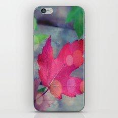 Fall Celebration iPhone & iPod Skin