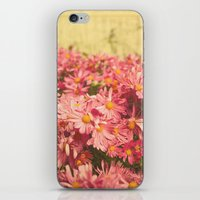 Little Pink Flowers iPhone & iPod Skin