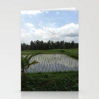 Sunrice Stationery Cards