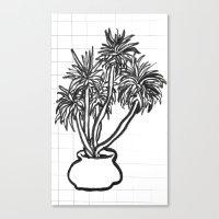 potential tree Canvas Print