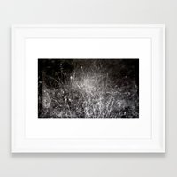 Nature  1  Framed Art Print