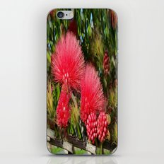 Wild fluffy red flowers iPhone & iPod Skin