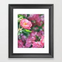 Lily Pulitzer Roses Framed Art Print