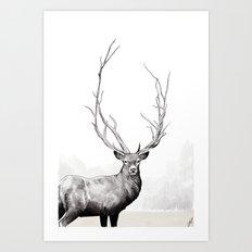 Wild - Portrait of a deer Art Print