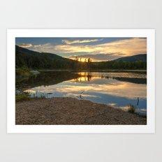 Lily Pond Sunset Art Print