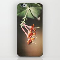 Honeysuckle iPhone & iPod Skin