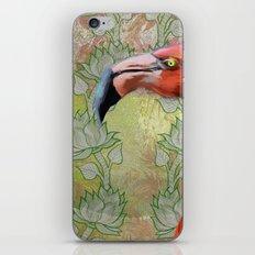 Red big bird iPhone & iPod Skin
