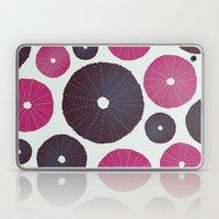 Sea's Design - Urchin Skeleton (Pink & Black) Laptop & iPad Skin