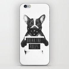 Rebel dog iPhone & iPod Skin