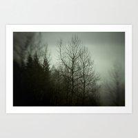 Tree Mist Art Print