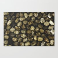 River Stones Canvas Print