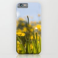 iPhone Cases featuring summer IX by petra zehner