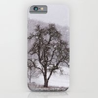 Old Pear Tree On A Winte… iPhone 6 Slim Case
