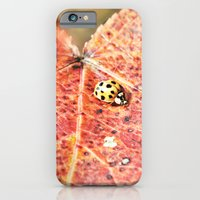 iPhone & iPod Case featuring Lady on the Run by Beth - Paper Angels Photography