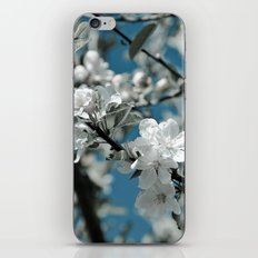 Almond Blossom iPhone & iPod Skin