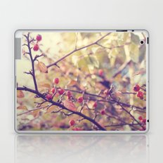 Berry Christmas Laptop & iPad Skin
