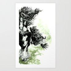 Gypsy Vanner Art Print