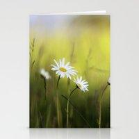 Daisy Landscape Stationery Cards