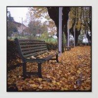 Autumn Leaves Canvas Print