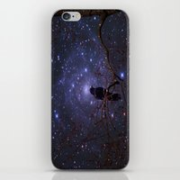 Black crow in moonlight iPhone & iPod Skin